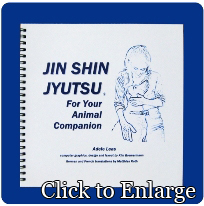 JIN SHIN JYUTSU FOR YOUR ANIMAL COMPANION by Adele Leas